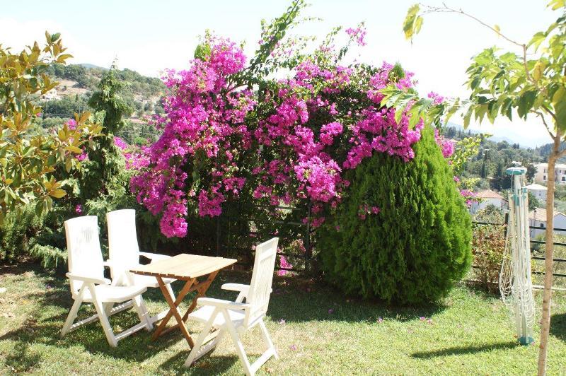 sivota vila magnolia